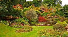 Autumn Rockery - Mount Stewart. (wontolla1 (Septuagenarian)) Tags: scotland mount stewart autumn colour colours colors orange pond waterfalls garden grounds estate bute rockery panasoniclumix14mmf25asphpancake
