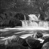 Hallamölla Falls - T-max 400 (magnus.joensson) Tags: sweden skåne österlen waterfall hallamölla rolleiflex carl zeiss 75mm f35 kodak tmax 400 selfdevelop adonal 125 epson v800 scan yellow filter