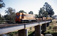2642 A1502 Boyanup 16 December 1981 (RailWA) Tags: railwa philmelling westrail 1981 a1502 boyanup