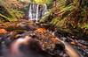 Autumn Falls (peter_beagan) Tags: autumn leaves water waterfall woods forest longexposure rocks moss colour canon canon70d formatthitechfilters ireland irishautumn antrim glenariff sigma 1020