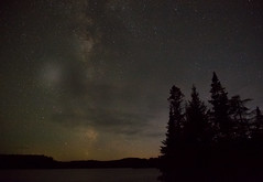 Something to hold onto. (PebblePicJay) Tags: whitetroutlake stars nature forest landscape night nightsky ontario eos6d canon longexposure