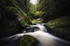 Le gouffre - Huelgoat (Francois Le Rumeur) Tags: huelgoat gouffre foret rivière river forest bretagne antre brittany france finistère water eau courant forêt cascade falls