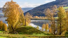 Autumn in Gudbrandsdalen (Sigurd R) Tags: ancient autumn barrow colours dalegudbrand fron grav gravhaug gudbrand gudbrandsdalen holyground hundorp landscape laugen mound norge norway river viking oppland no