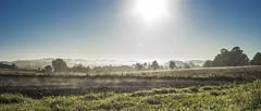 morning breaking over Little Bedwyn (HHH Honey) Tags: sonya7rii tokina2035mmlens sunrise mist misty landscape wiltshire chisbury sky trees contrails ploughedfield littlebedwyn