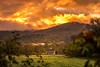 Sunrise Farm (Nicholas Erwin) Tags: sunrise goldenhour morning dawn golden gold morninglight fog clouds landscape nature naturephotography autumn fall farm field greenmountaingarlic nikon d610 70200f4vr waterbury vermont vt unitedstatesofamerica usa america fav10 fav25 fav50 fav100