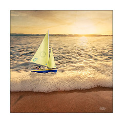 Halcyon Days (Mike Hankey.) Tags: sunrise lowtide warriewood colour