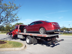 Towing a Taurus (EX22218 - ON/OFF) Tags: red taurus ford blue clouds sky tree green grass draught branches dead cone orange white flatbed truck tow man repo mimosa hear lichen drivers safe burgundy letsguide