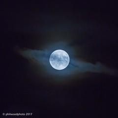 307/365 - Beaver Moon (phil wood photo) Tags: 2017 2017photofun 365 70200f4l beavermoon cropped day307 frostmoon handheld huntersmoon lunar moon night square