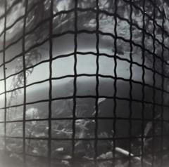 _2020746 (nikosaminira1) Tags: pinhole pinholecamera analog film filmphotografy analogphotografy diycamera papercraft papercraftcamera fisheyelike 120 120film 66format selfdevelopment caffenol bw