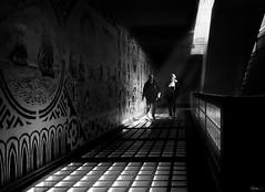 along the glass bricks (René Mollet) Tags: bricks glass glassbricks light underground manwoman shadow streetart street streetphotography silhouette streetphotographiebw sunrise urban urbanstreet renémollet