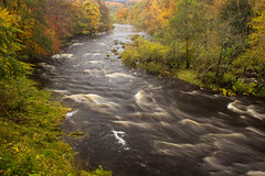 River Wharfe (Julian Barker) Tags: river wharfe the strid bolton abbey north yorkshire england uk europe long exposure movement polariser water flow flowing current tree trees foliage vegetation fall colours sinuous snaking julian barker canon dslr 600