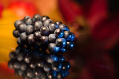 Blue Grape in Gold (Theo Crazzolara) Tags: grape stilllife stillleben autumn fall herbst macro weintrauben wein trauben colour color food foodporn golden fresh natural regent bluegrape rebsorte blaueweintrauben
