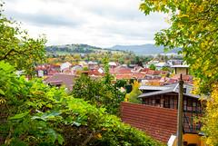 Rudolstadt von oben (Heidecksburg) 00 (zimmermann8821) Tags: berge gebäude herbst naturlandschaft