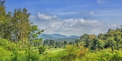 View from a Road (SivamDesign) Tags: canon eos 550d rebel t2i kiss x4 18135mm zoom kit canonefs18135mmf3556is wayanad kerala forest landscape nik collection plugins filters