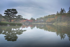 Calmness (arbivi) Tags: autumn fall foliage koyo reflection tree cloudy cloud fog mist showakinen koen park tachikawa tokyo japan hdr arbivi raymondviloria canon 60d