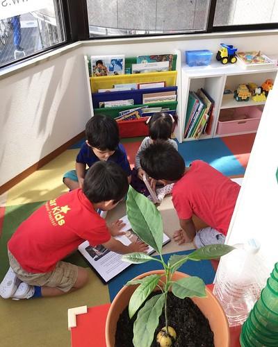 Star Kids International Preschool, Tokyo.