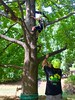 IMG_7626 (Montgomery Parks, MNCPPC) Tags: trees treeclimbing climbing children boy girl boys girls mothers families walllocalpark rockville popupinmontgomeryparks fall autumn october october2017 scaling