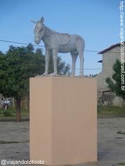 Timbaúba dos Batistas - Estátua em homenagem ao jegue (Sergio Falcetti) Tags: brasil cidade estátua ginásio riograndedonorte rn timbaúbadosbatistas viagem