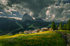 Village 山村 (kaising_fung) Tags: fence flowers mountain meadow houses village light