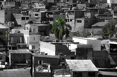 Foto- Arô Ribeiro -5654 (Arô Ribeiro) Tags: pb street blackwhitephotos photography laphotographie art arôribeiro sãopaulo grajaú despacito