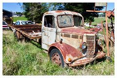 O-type Bedford 5-tonner (SemmyTrailer) Tags: bedford otype truck lorry nz