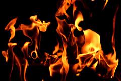 ...flamin' it tonight... (carbumba) Tags: fire flames fireplace burn glow contrast blackbackgound october yellow gold nikon closeup