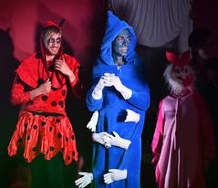 Chaos Circus (Peter Jennings 25 Million+ views) Tags: chaos circus kozo winchester auckland new zealand peter jennings nz