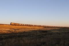 3G2A7441 (kschmidt626) Tags: powder river coal train wyoming bnsf union pacific sunset sunrise tier 4