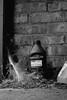 Forgotten corner (smcnally24601) Tags: black white stilllife webs cobwebs forgotten garage england english britain british autumn fall