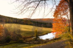 Tranquil Morn (Simmie | Reagor - Simmulated.com) Tags: 2017 autumn cloudlandrd connecticut connecticutphotographer fall fallcolor farm landscape landscapephotography morning nature naturephotography newengland october outdoors sleepyhollowfarmhomestead unitedstates vermont vermontfarm woods ctvisit digital https500pxcomsreagor httpswwwinstagramcomsimmulated wwwsimmulatedcom woodstock us