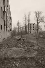 _MG_8413 (daniel.p.dezso) Tags: kiskunlacháza kiskunlacházi elhagyatott orosz szoviet laktanya abandoned russian soviet barrack urbex ruin military base militarybase
