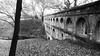 Aqueducs de Laudun l'Ardoise (Haut-En-Couleur) Tags: laudunlardoise contrast noiretblanc nature contraste aqueduc nb blackandwhite bw