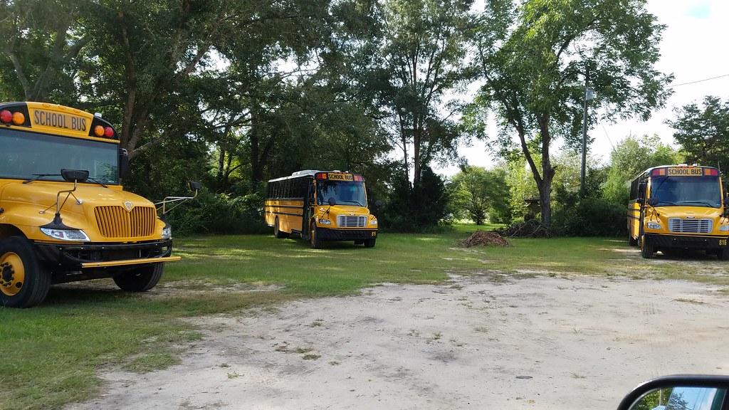 Bay District Schools (abear320) Tags: school bus bay district schools ic  blue bird