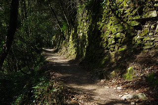Day 1: Forest paths of Cinque Terre