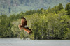 Brahminy kite - Haliastur indus (hayastanlover) Tags: maleisië malaysia
