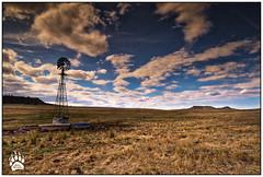 Wyoming Windmill 092717-1154-H-W.jpg (RobsWildlife.com © TheVestGuy.com) Tags: ©2017robswildlifecom canoncamera falls robswildlifecom nationalpark robsoutdoorphotography rmnp 092717 canon nature estes naturelovers scenic colorado robswildlife fallfoliage robdaugherty naturephotography rockymountainnationalpark
