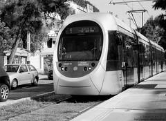 at the tram station (georgios a.v.) Tags: asahipentaxsp1000 mamiyasekor502 rodinal185 kodakprotmax100 ilfordrapidfixer nopp filmphotography handprocessedfilm