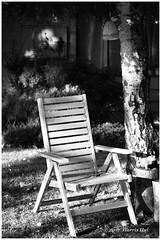 Simplicity Is Not Only Good For Photography - Calder XP7291e (Harris Hui (in search of light)) Tags: harrishui fujixpro2 digitalmirrorlesscamera fuji fujifilm vancouver richmond bc canada vancouverdslrshooter mirrorless fujixambassador xt1 fujixcamera fujixseries fujix fuji60mmf24macro fujiprimelens fixedlens neighbourhood walk simplicity simple stilllife chair empty acrosfilmsimulation acros bw blackwhite digitalbw mono monochrome philosophical philosophyoflife sidelighting street