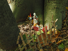 Gnomes (jesse_the_ros) Tags: buachair netherlands wandering utrecht tree mushroom trees exploring kunst craobh october craobhan bomen coille paddestoel autumn kabouter olympus photography gnome bilthoven art nature boom fall bos herfst explore forest foghar outdoor