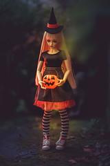Happy Halloween :) (*DollyLove*) Tags: halloween samhain blessings pumpkin spooky dark bokeh canon 85mm feeple60 cygne swan witch bjd doll fairyland portrait