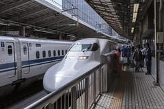 Riding the Shinkansen - Tokyo to Kyoto (andyrousephotography) Tags: japan tokyo kyoto tokyostation shinkansen bullettrain train highspeed nozomi hikari sakura kodama design engineering aerodynamic slick speed standardgauge 4ft8½inches 1435mm track pride efficiency staff pinkladies andyrouse canon eos 5d3 5dmkiii ef24105mmf4l