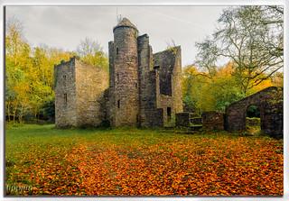 Careys Castle #1