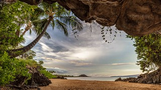 Tropical Cave