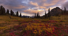 Fall Colors in the Mountais (Mt Rainier NP, WA) (Sveta Imnadze) Tags: mountains mtrainiernp wa pacificnorthwest chinookpass nature fall autumn sunset