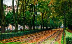 Autumn in Krakow (Näo) Tags: autumn otoño trees árboles hojas leaves tram tranvía railway raíles poland cracovia krakow polonia