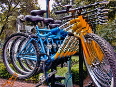 Bikes (ingcuevas) Tags: bike bicycle bikes colorful vibrant yellow blue contrast rythm multiple bright wheels round metal vehicle bicicleta cool colors park photostreet