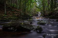 down stream at Gibson's cave (R0BERT ATKINSON) Tags: gibsonscave summerhillforce middletoninteesdale teesdale waterfall river stream trees nikond5100 northeastengland robatkinsonphotography sigma1020 leefilter