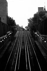 One Way or Another (Thomas Hawk) Tags: america chicago cookcounty illinois usa unitedstates unitedstatesofamerica wickerpark bw subway traintracks us fav10 fav25 fav50