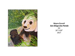 """San Diego Zoo Panda • <a style=""""font-size:0.8em;"""" href=""""https://www.flickr.com/photos/124378531@N04/37067205574/"""" target=""""_blank"""">View on Flickr</a>"""