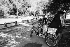 NYC | Pedicab, Central Park (MR Photog) Tags: nikonf2 nikkor28mm ilford xp2400 bw blackandwhite monotone newyorkcity nyc centralpark pedicab transportation vendor streetvendor expensive
